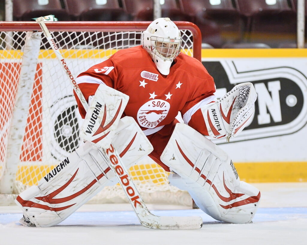 Halverson (Photo: OHL Images)