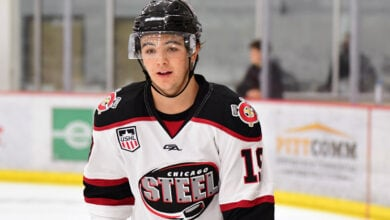 Photo of 2020 NHL Draft Scouting Report: Brendan Brisson
